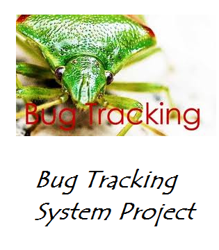 Bug Tracking System Project