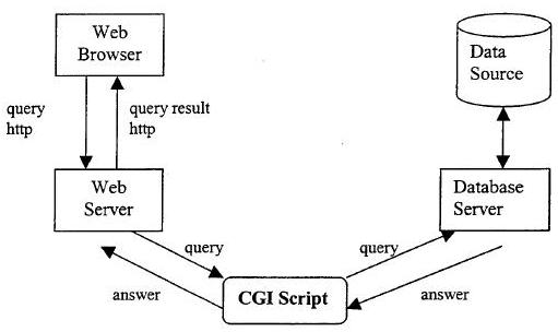 Database access on the Web using CGI scripts