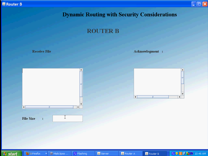 Dynamic Routing2