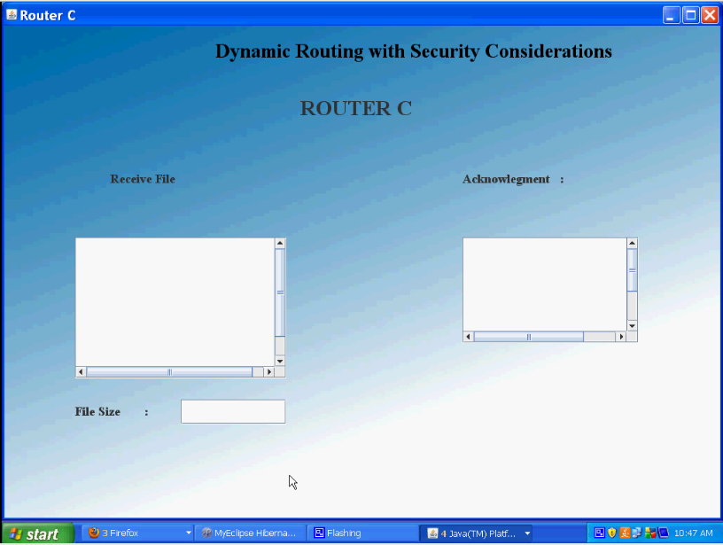 Dynamic Routing3