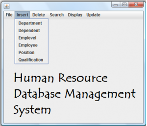 Human Resource Database Management