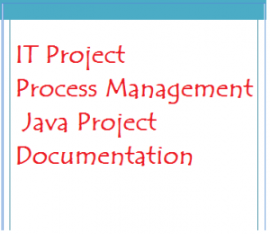 IT Project Process Management