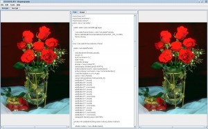 Image Steganography Java Project Source Code