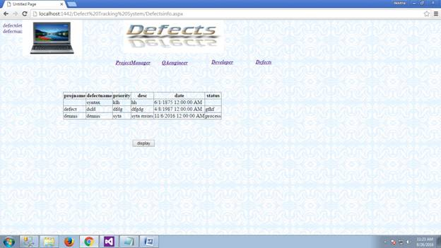 Defect Tracking System 29