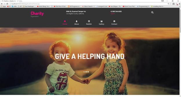 Online Charity Website Development 20